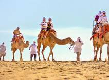 Outback & Camel Safari by Cabo Adventures